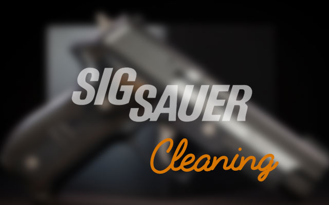 Your [Complete] Guide To Sig Sauer Mosquito Cleaning